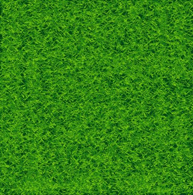 Green Soccer Grass Field