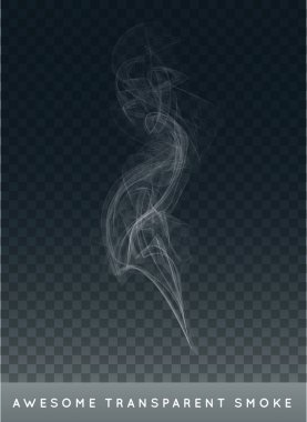Vector Realistic Cigarette Smoke or Fog or Haze with Transparency Isolated can be used with any Background stock vector