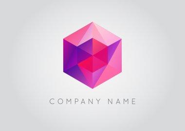 Trendy Crystal Triangulated Gem Logo