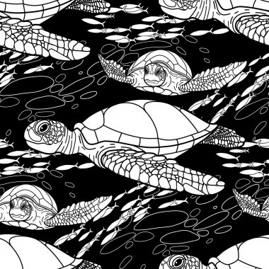 Hawksbill sea turtle pattern
