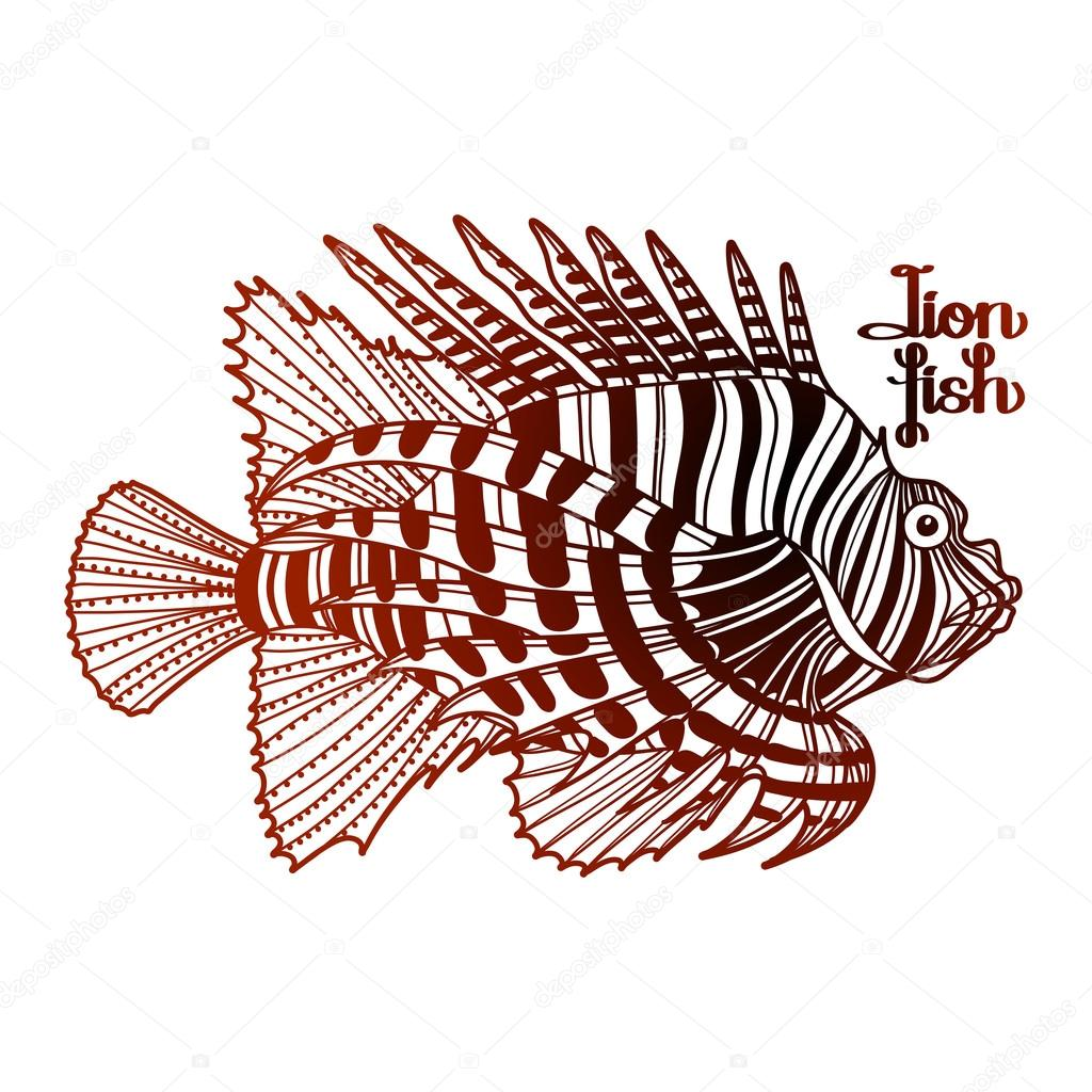 Graphic lion fish — Stock Vector © homunkulus28 #106297286