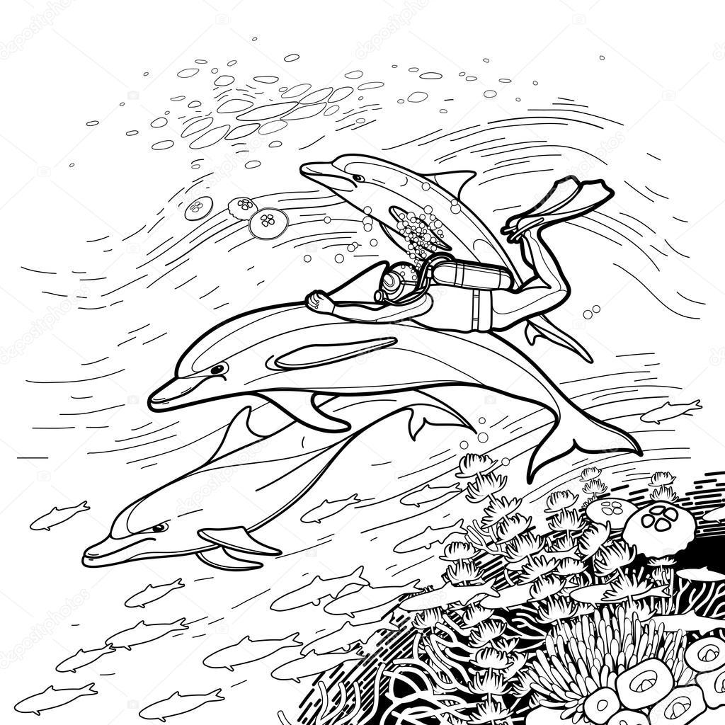 Grafik, Reiten die Dolphin Taucher — Stockvektor © homunkulus28 ...