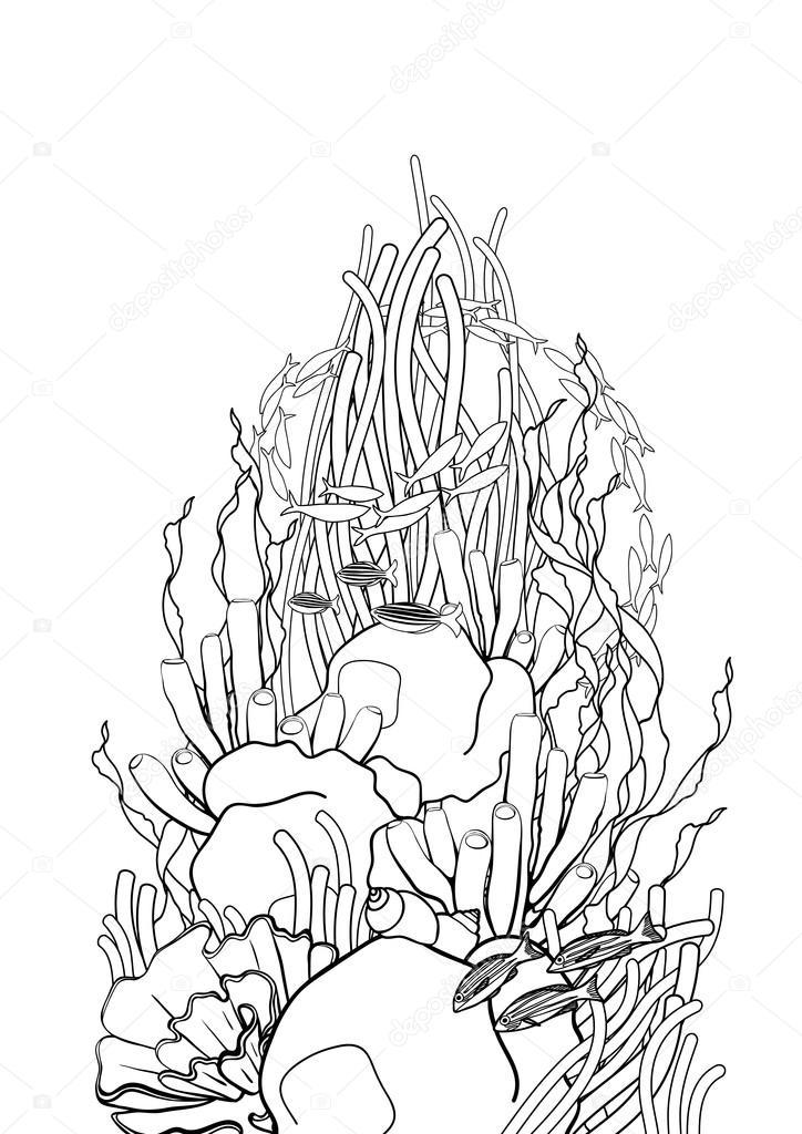 Diseño de arrecifes de coral — Vector de stock © homunkulus28 #122753770