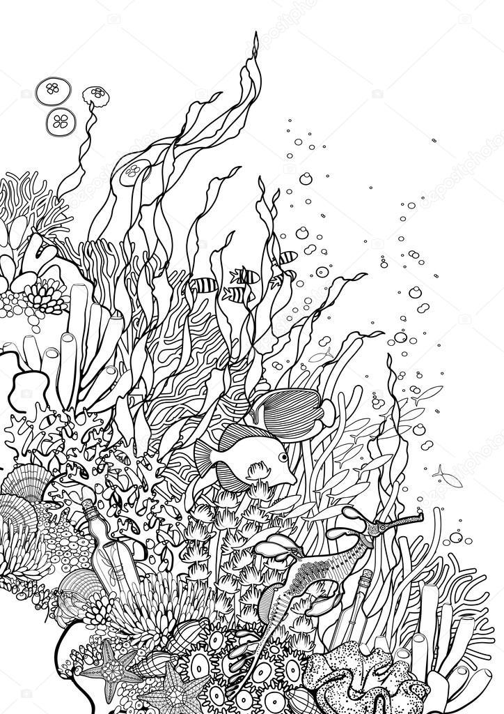 Diseño de arrecifes de coral — Vector de stock © homunkulus28 #122796944