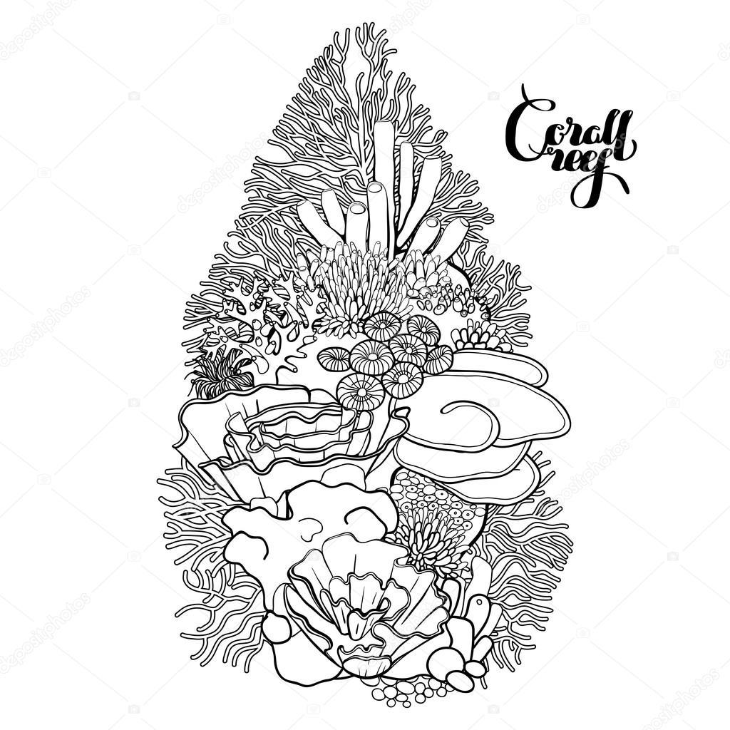 Diseño de arrecifes de coral — Vector de stock © homunkulus28 #94224574