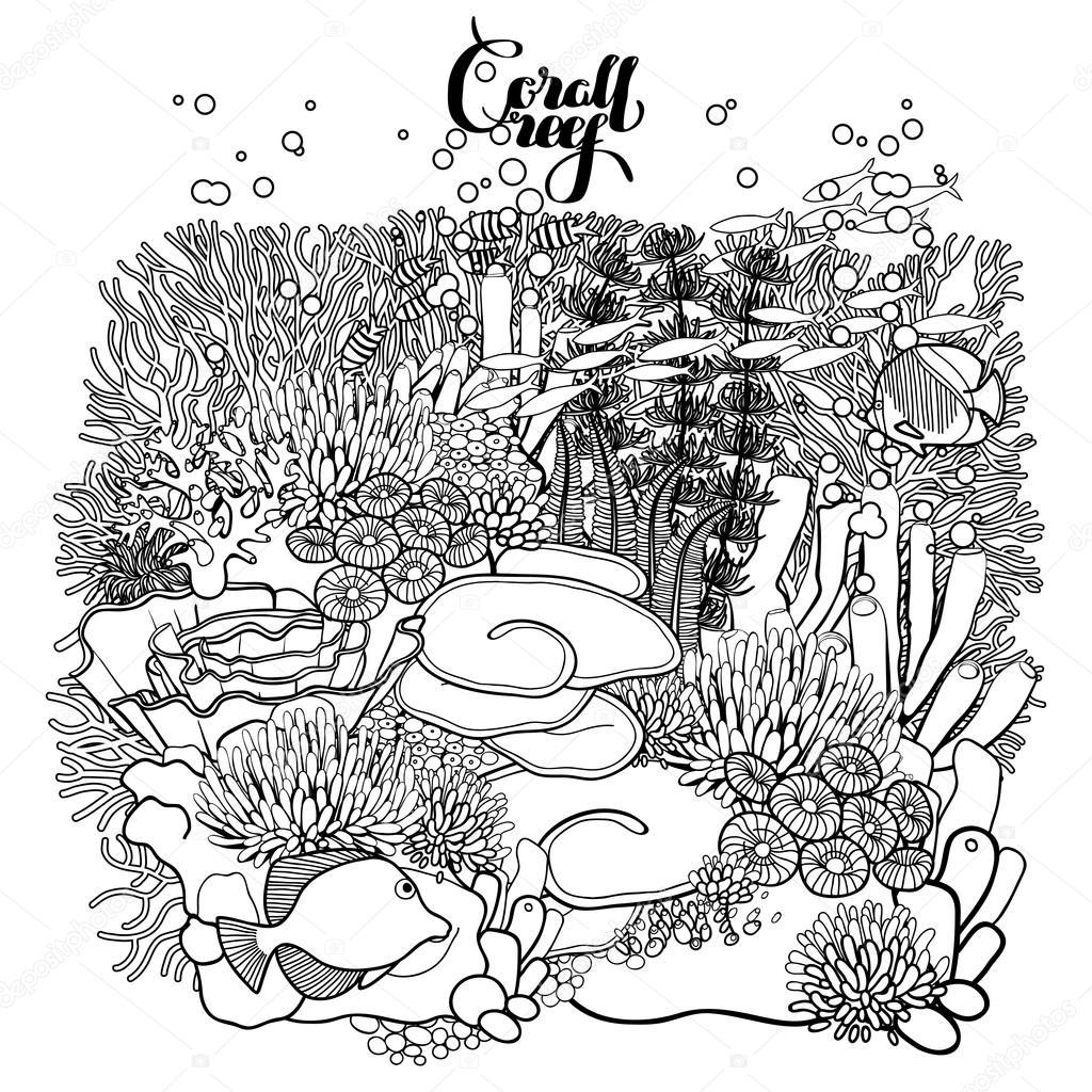 Diseño de arrecifes de coral — Vector de stock © homunkulus28 #94582616