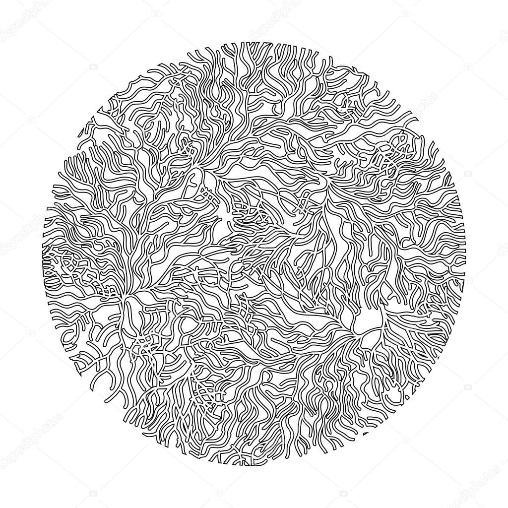 Coral  graphic circle background