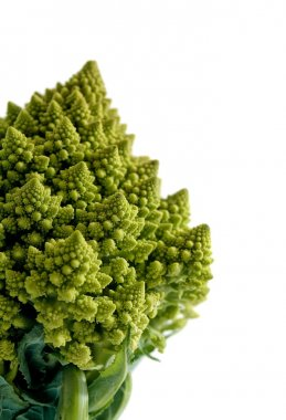 Decorate broccoflower - brocolli isolated on white background