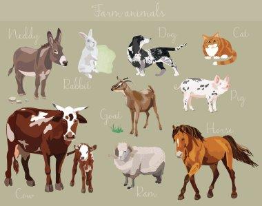 Vector set of different farm animals