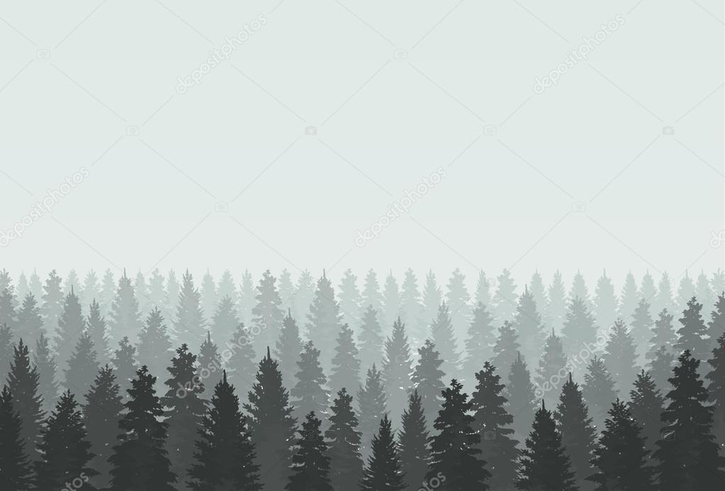coniferous forest silhouette template vector illustration