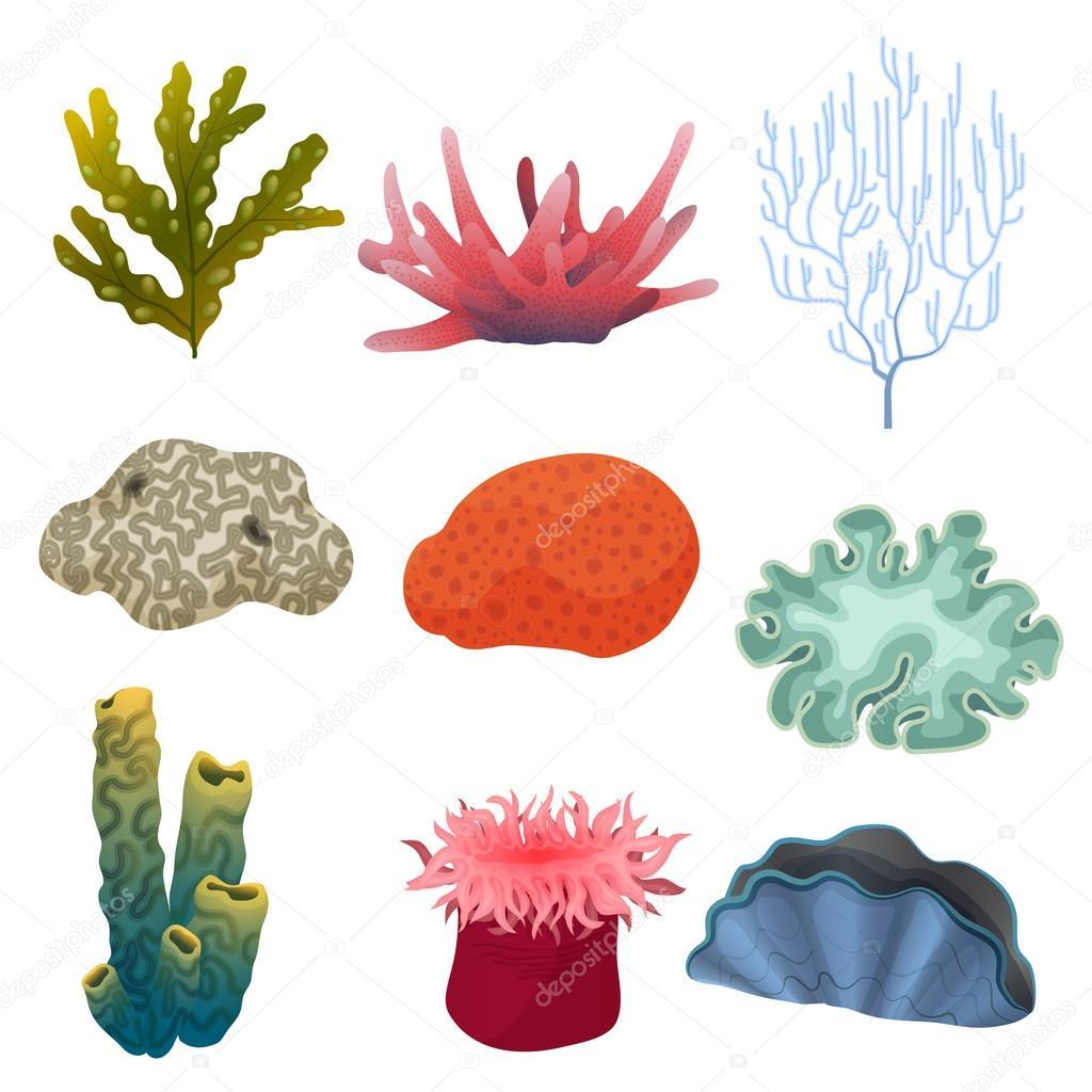 establecer diferentes tipos de plantas subacu u00e1ticas de fish tank clip art black and white fish aquarium clipart