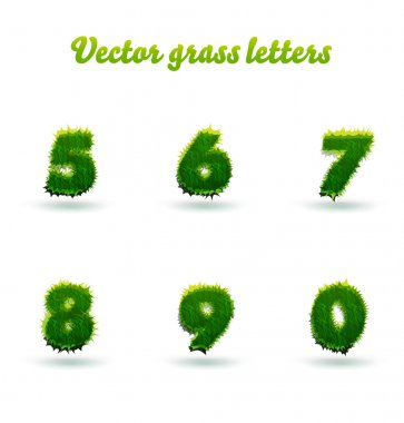 green grass numbers