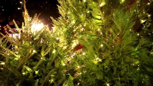 vánoční stromeček s ozdobami a světla