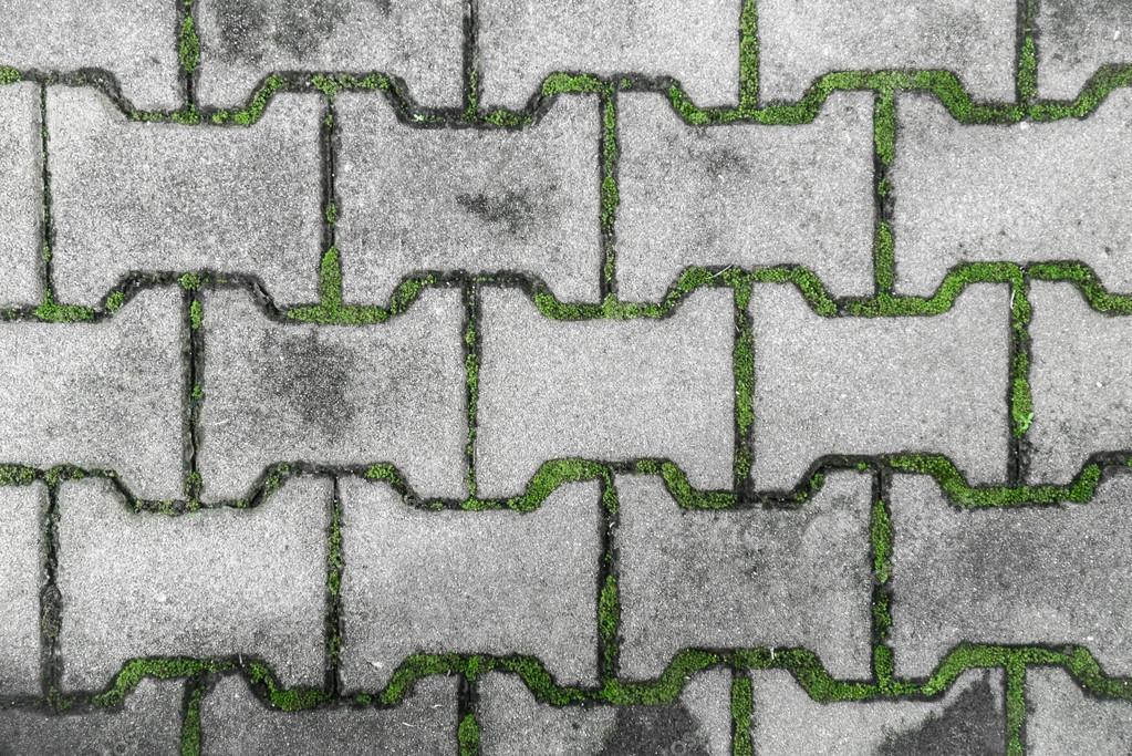 Stradale piastrelle con muschio u foto stock bonnontawat