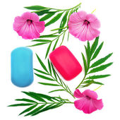 Flowers and soaps isolated