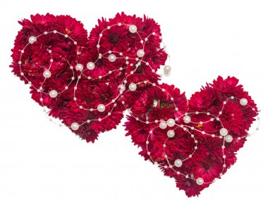 Two hearts from flowers of chrysanthemums