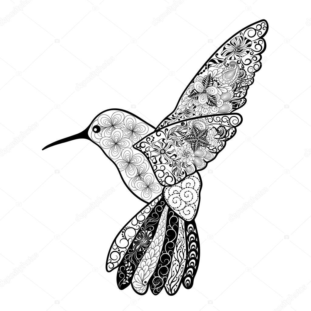 Imágenes Colibri En Blanco Y Negro Colibri Doodle Ilustración