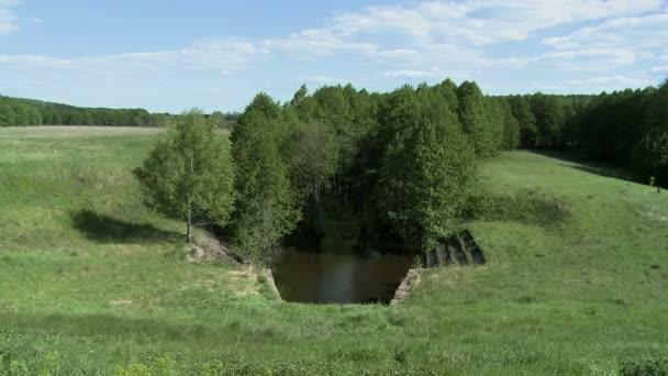 Relaxační krajinu scény - rybník a Les