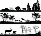 divoká zvířata (medvěd, Flamingo, jelen) v různých lokalitách
