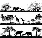 divoká zvířata (žirafa, slon, lev) v různých lokalitách