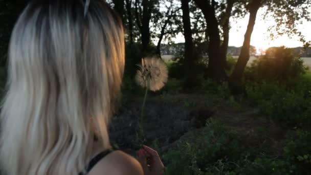 Dívka, foukání Pampeliška na louce při západu slunce