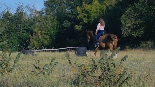 Krásná dívka na koni v přírodě v pomalém pohybu