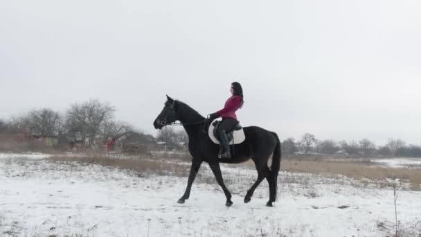 Mladá brunetka žena jezdí na krásném černém koni na poli nebo zasněžené farmě v zimě. Jízda na koni, jezdecký sport. Žena jezdec na koni chůzi ve sněhu venku