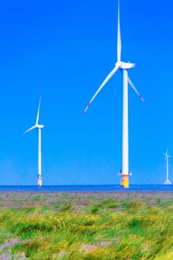 Wind generators turbines in the sea