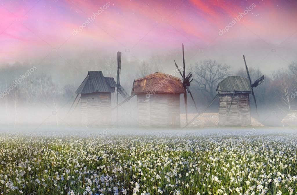 Wooden windmills in Pirohovo