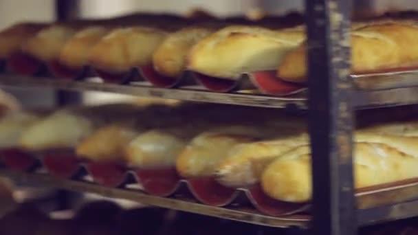 Shelves With Fresh Crispy Bread In The Bakery Stock Filmmaterial