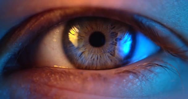 Extreme Nahaufnahme des weiblichen menschlichen Auges. Frauenauge blinkt.