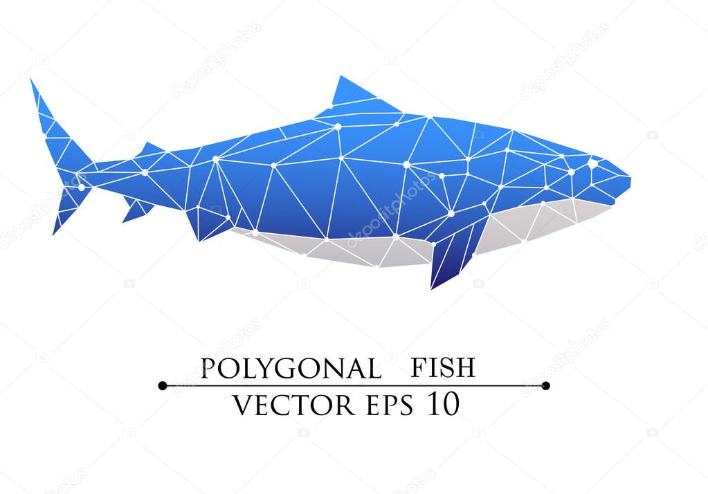 Polygonal Big Fish Grampus Shark Whale Blue With White Belly Vector Illustration