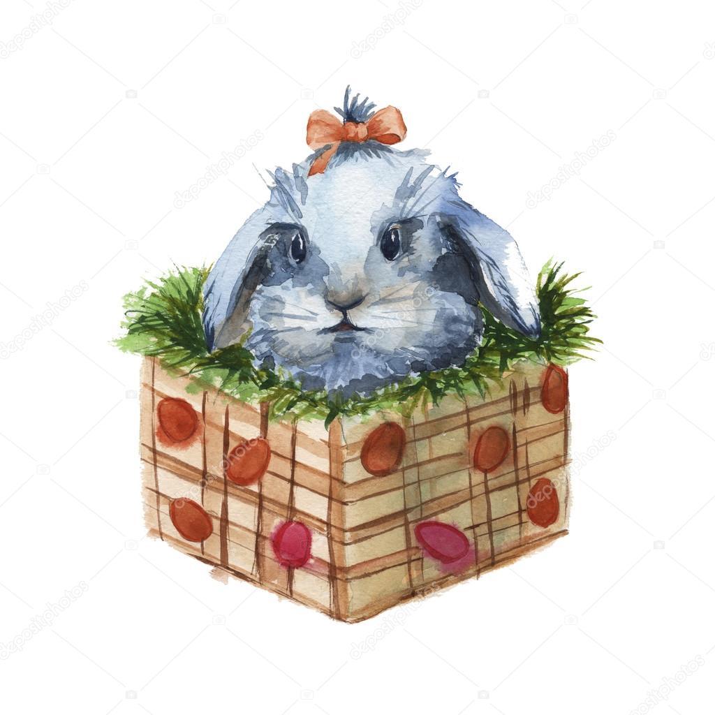 260aaa07c43 Πάσχα λαγουδάκι σε ένα κουτί με χόρτο. απομονωμένη. Ακουαρέλα — Φωτογραφία  Αρχείου