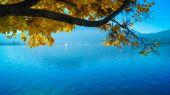 Fotografie Tegernsee-Bucht im Herbst