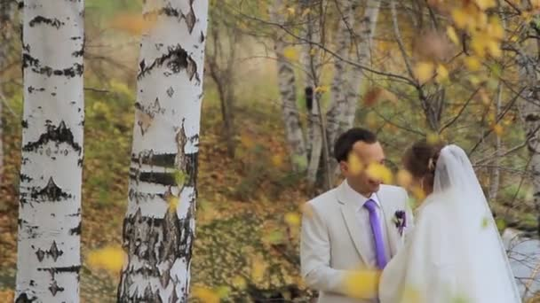 The couple are on the background of birch trees.