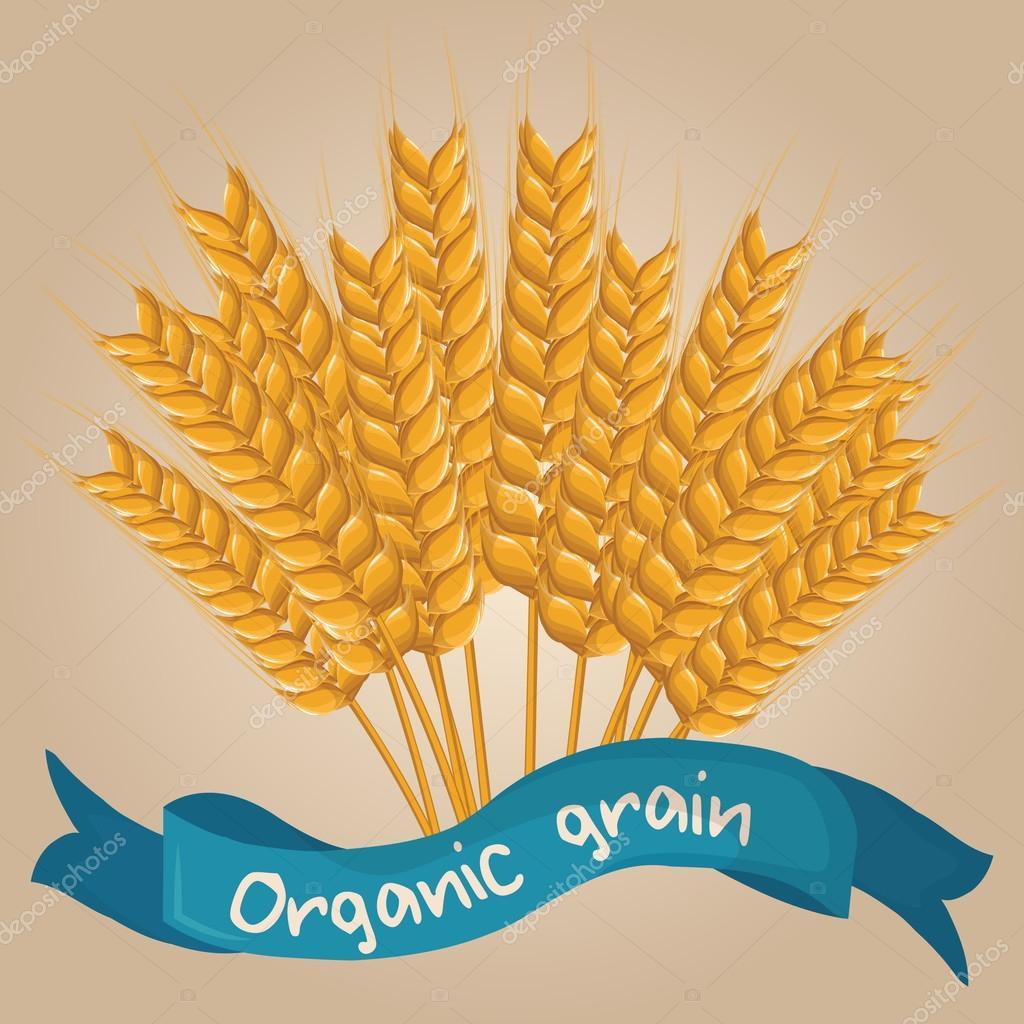 Vector cartoon wheat with blue ribbon