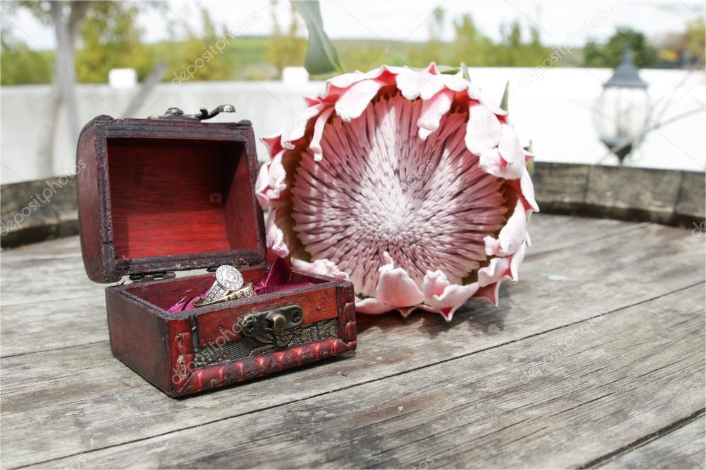 Wedding rings in a box with Protea