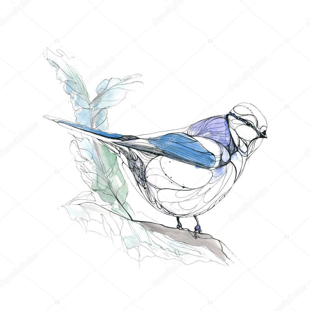 Watercolor hand drawn bird. Vector illustration