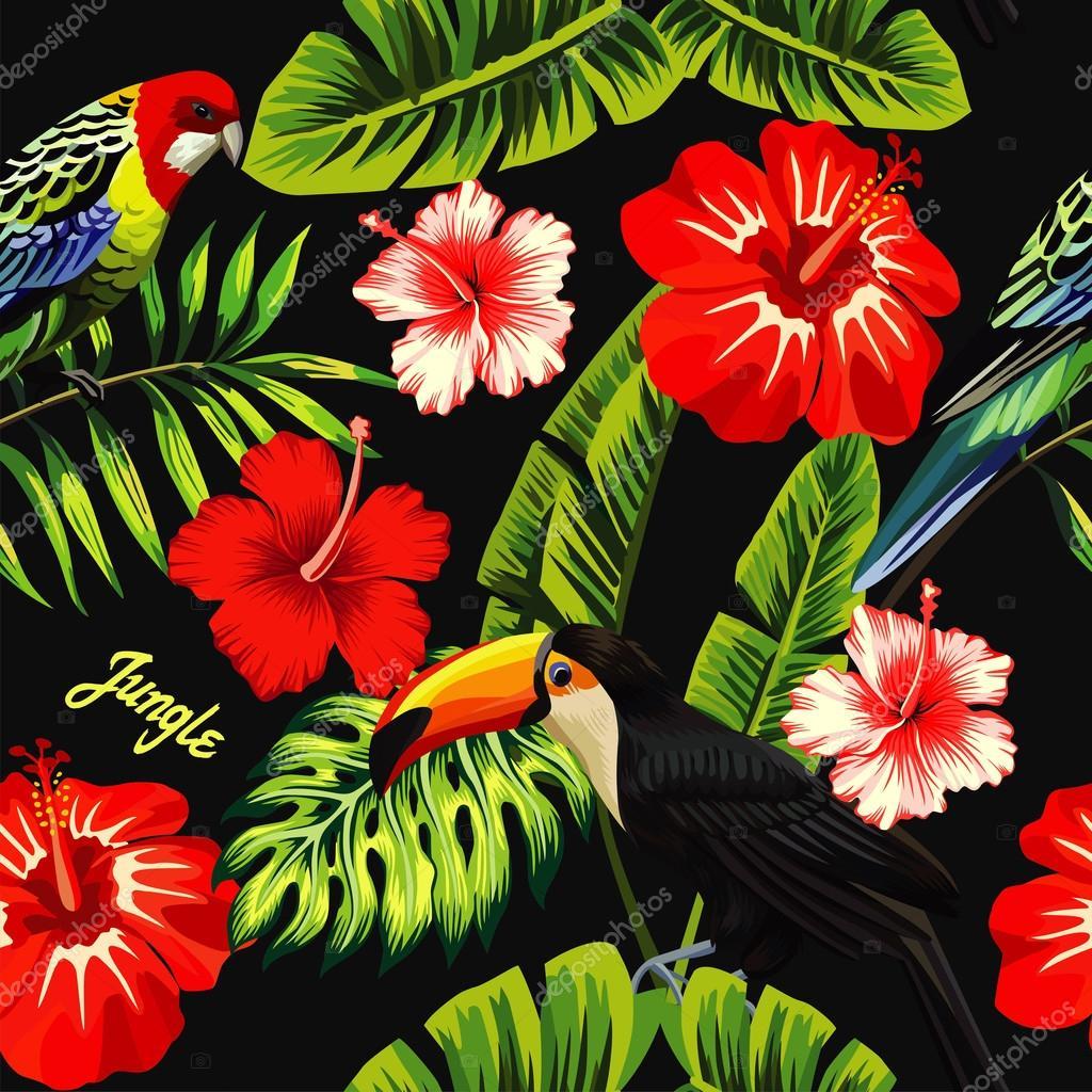 feuille de bananier hibiscus perroquet toucan — image vectorielle