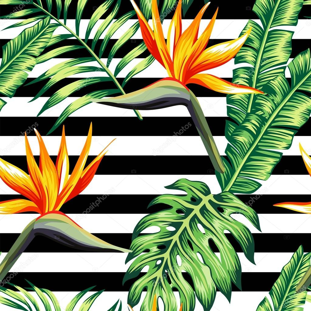 tropical floral seamless background