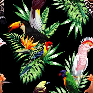 tropical birds and palm leaves seamless black background