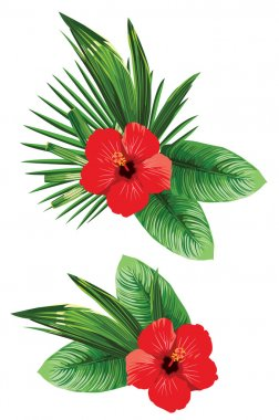 arrangement of tropical flower
