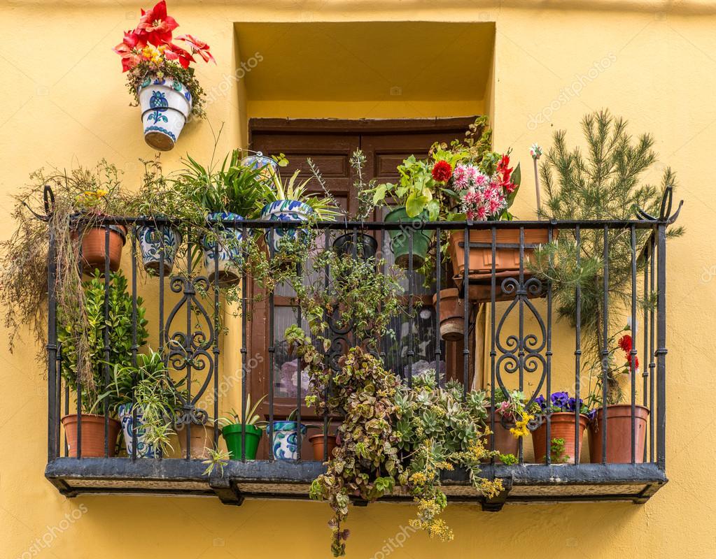 Blumentopfe Auf Balkon Stockfoto C Mickeym 107932838