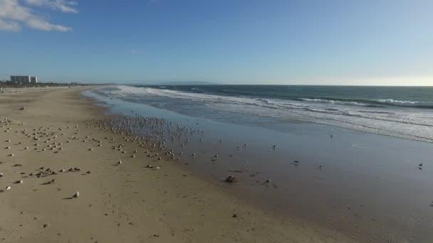 Pěnivý vlny jemně kolo na pobřeží