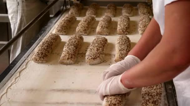 Pekaři dávat syrové bagety s semena plech