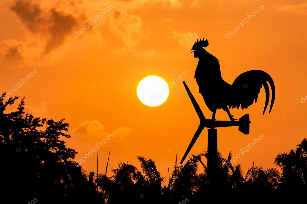 Roosters crow stand on a wind turbine.