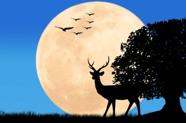 Silhouettes of deer on full moon and eagle fly on sky background Wild life landscape stock vector