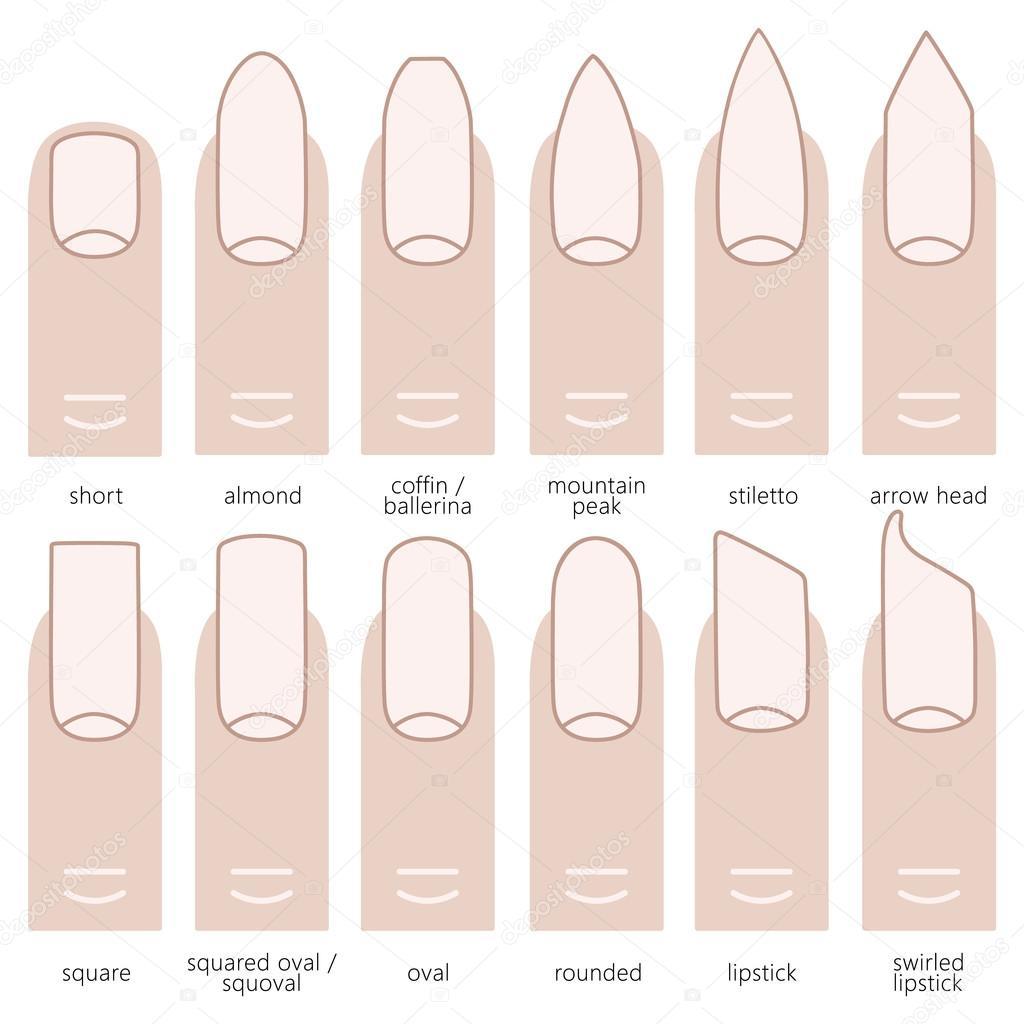verschiedenen nagel formen stockvektor 113183516. Black Bedroom Furniture Sets. Home Design Ideas