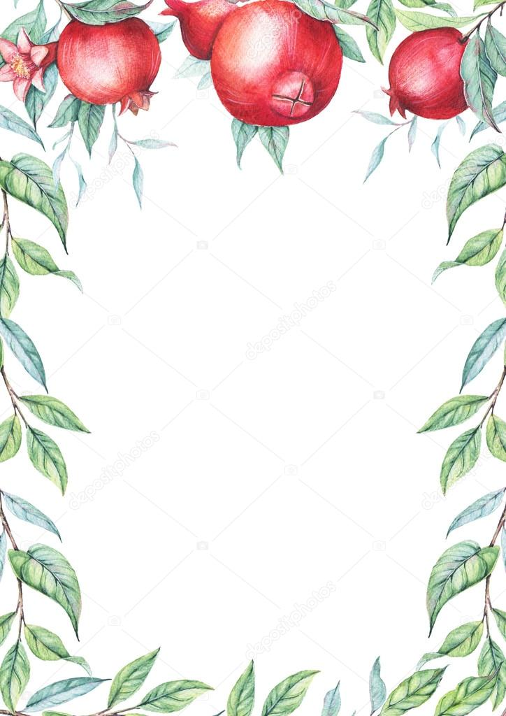 Hand drawn watercolor border with botanical illustration of pomegranate branch with green leaves isolated on white.