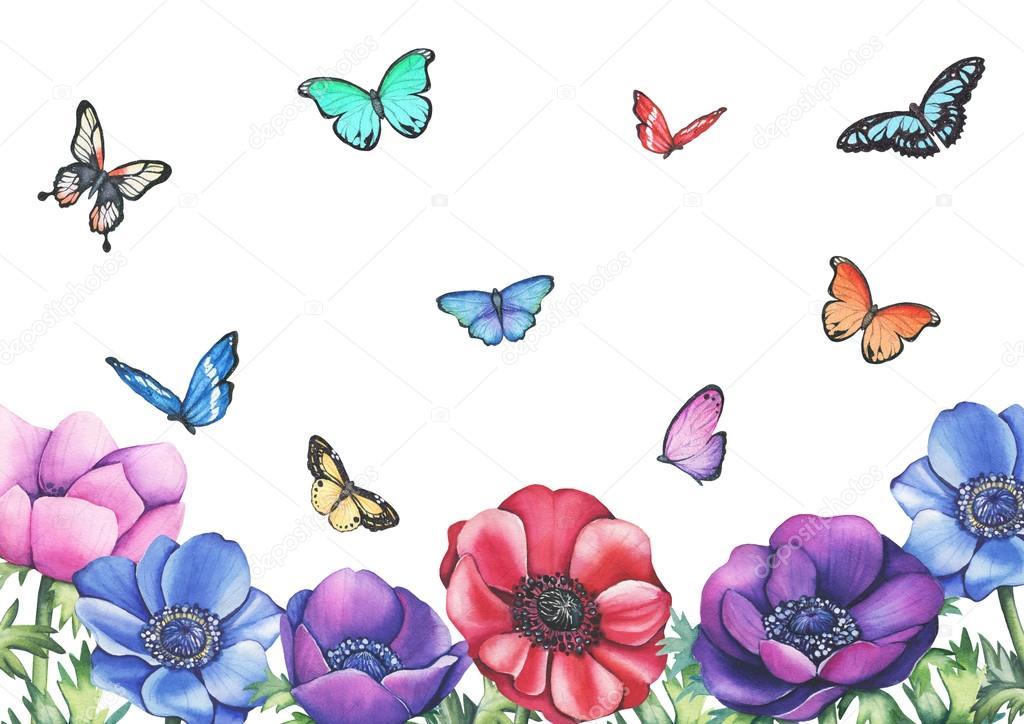Anemone Aquarell Blumen Schmetterlinge gerahmt — Stockfoto ...